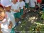 1学期/7月 ミニトマトの収穫
